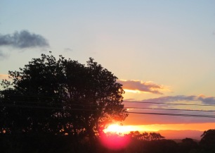 Image result for Deb whittam sunrise