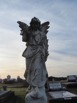 angel - 1