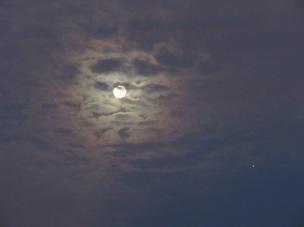 moon - 1 (1)